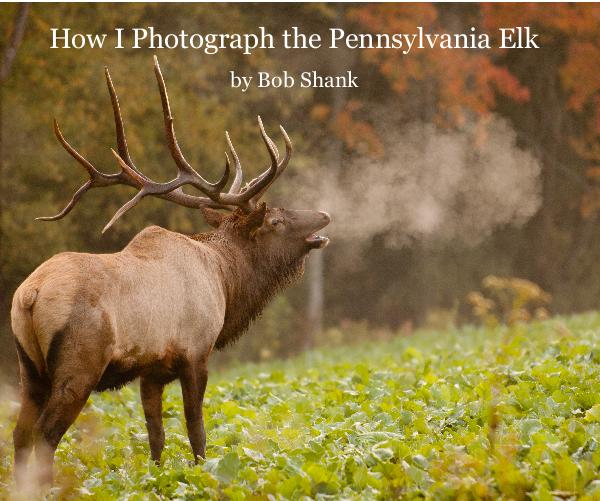 Pennsylvania Elk Photography Experience Photo Book by Bob Shank Photography